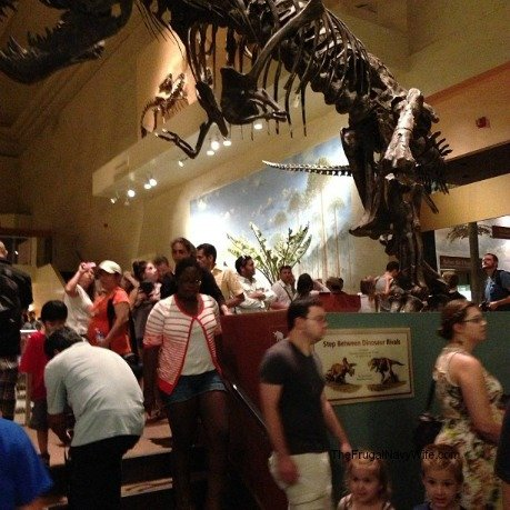 The T-rex was so big i couldn't fit it and my kids in the same pic!