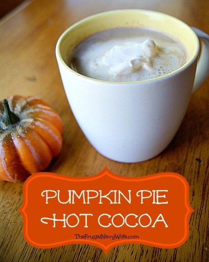Pumpkin Pie Hot Chocolate is a delicious fall treat for kids or moms and dads to enjoy. Sweet and decadent it will surely warm you all the way to your toes on a cool fall day.