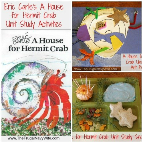 A House for Hermit Crab Unit Study