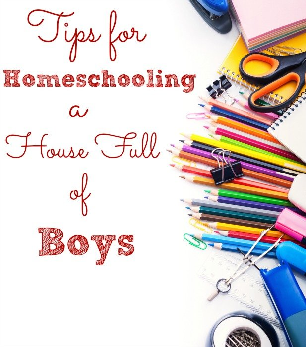 Tips for Homeschooling a House Full of Boys