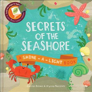 secrets_of_the_seashore