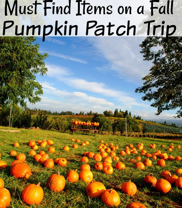 20 Fun Must Find Items on a Fall Pumpkin Patch Trip