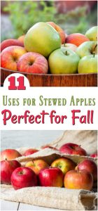 11 Must Try Uses for Stewed Apples Perfect for Fall