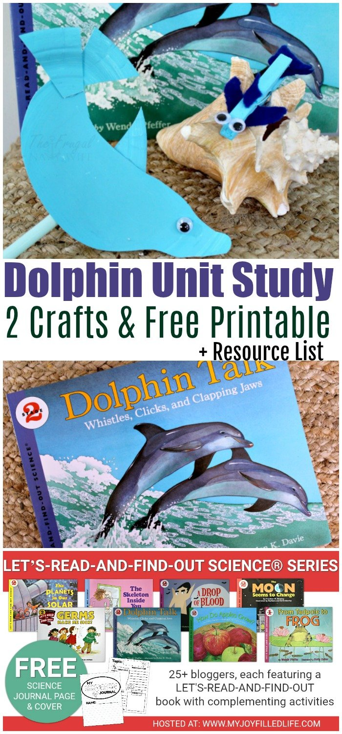 Dolphin unit study collage for pinterest
