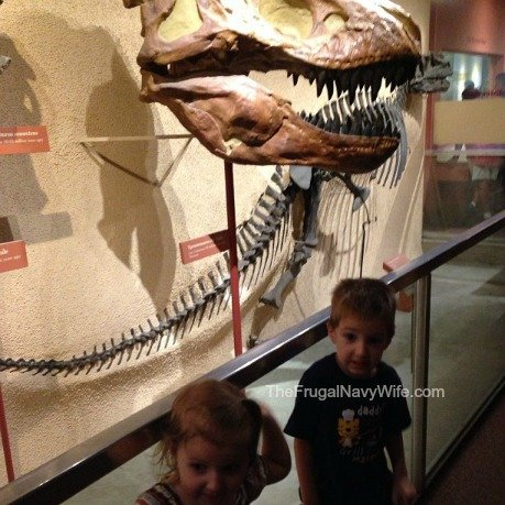 They were a bit scared with how big a T-Rex head was compared to them!