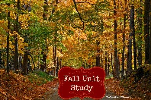 Fall Unit Study