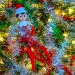 Elf on the Shelf Gets Tangled