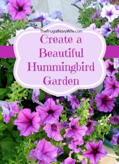 Create A Beautiful Hummingbird Garden   01