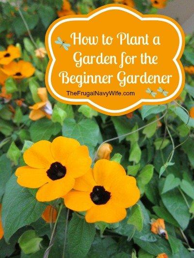 How to Plant a Garden for the Beginner Gardener