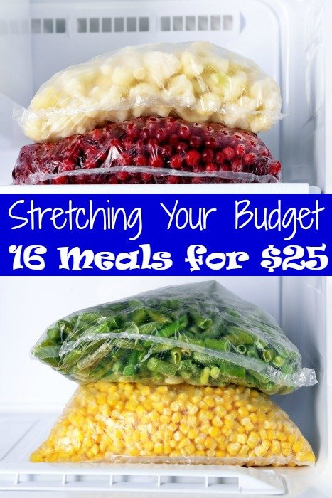 Menu Planning and Stretching Your Budget – 16 Meals for $25