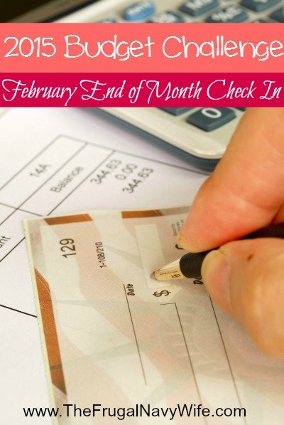 2015 February Budget Challenge End of Month Check In