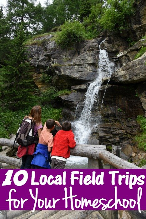 10 Local Field Trips for Your Homeschool