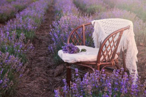 Original wedding decoration in lavender flowers