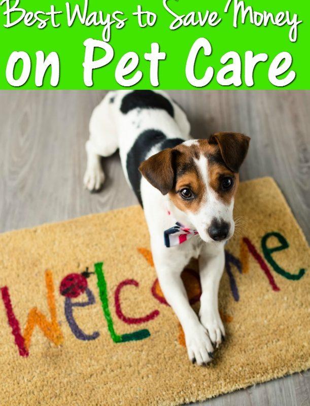 Frugal Pet Care 101