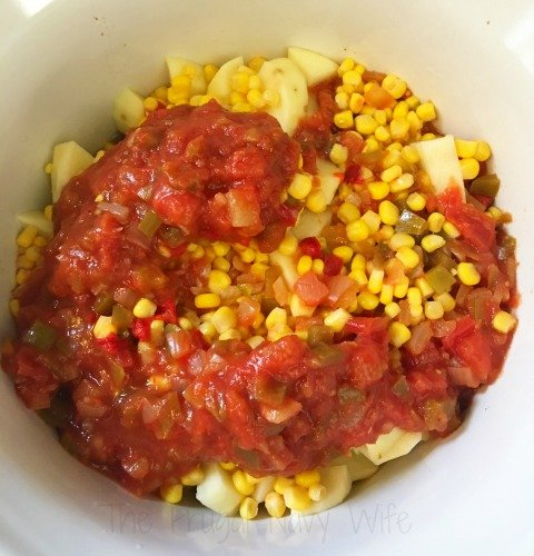Slow Cooker Beef Southwestern Soup Recipe (Only 5 Ingredients) Salsa