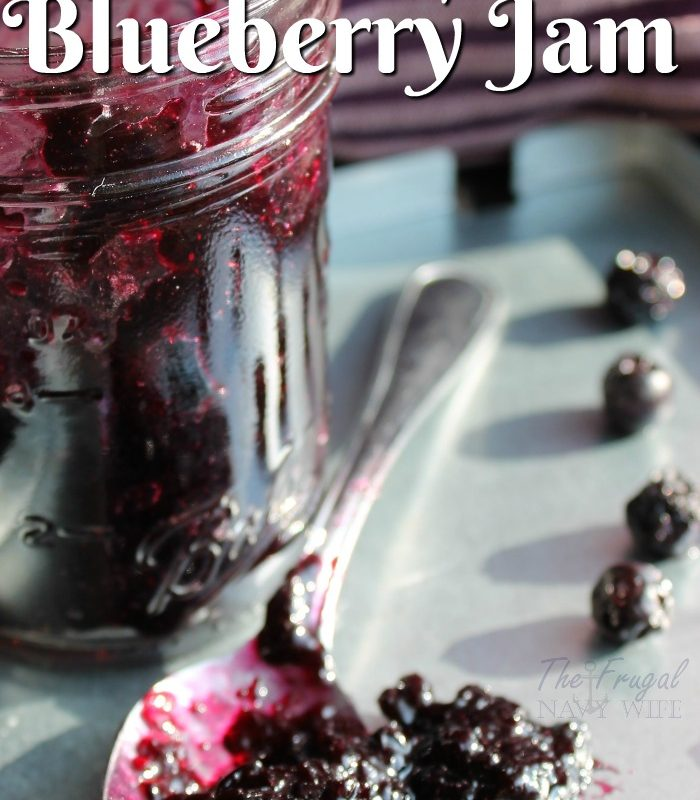 The Best Instant Pot Blueberry Jam Recipe EVER!