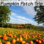 Kids love exploring pumpkin patches and enjoying the seasonal items. Consider these 20 items to spy on a fall pumpkin patch trip this year. #frugalnavywife #falladventures #pumpkinpatch #ispygame #kidsactivities #familyadventures   Pumpkin Patch   Family Fun   Fall   Pumpkin Patch Ideas   I Spy Games for kids   Kids Activities   Fall Kids Activities