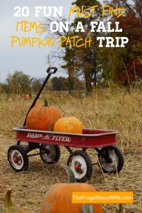 Kids love exploring pumpkin patches and enjoying the seasonal items. Consider these 20 items to spy on a fall pumpkin patch trip this year. #frugalnavywife #falladventures #pumpkinpatch #ispygame #kidsactivities #familyadventures | Pumpkin Patch | Family Fun | Fall | Pumpkin Patch Ideas | I Spy Games for kids | Kids Activities | Fall Kids Activities