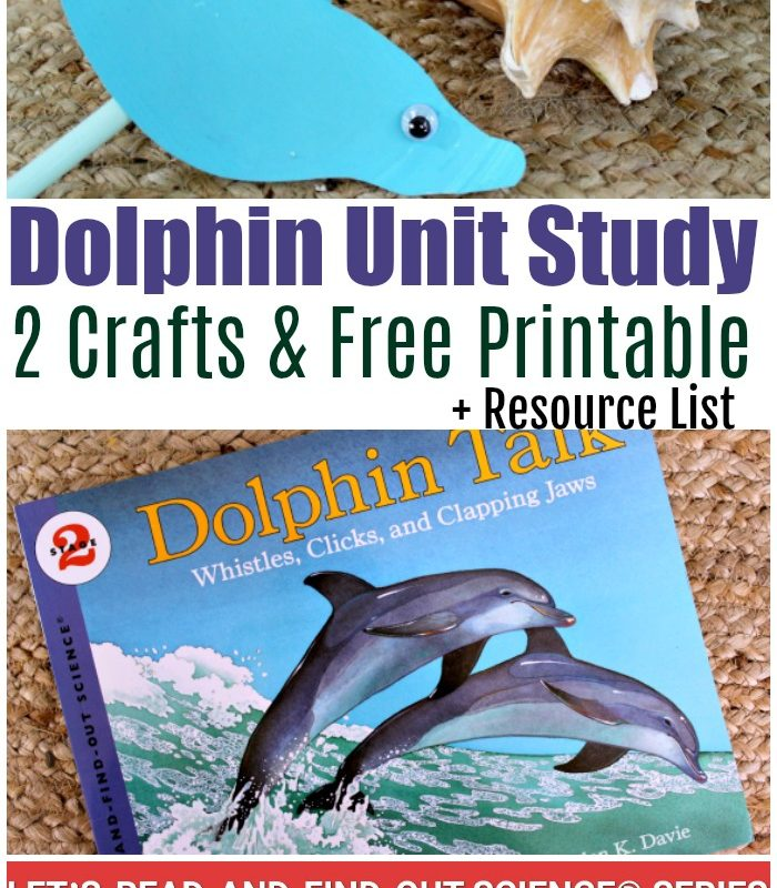 Learning about Dolphins with Let's Find Out Science Dolphin Talk Mini Unit