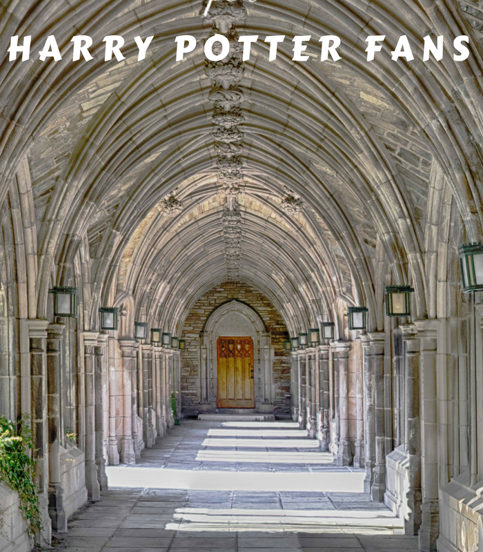 20 Magical Gifts for Harry Potter Fans