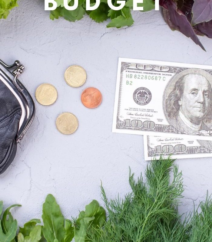 $100 Until Payday: The $100 Grocery Budget (or Less!)