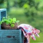 You can take these simple Great Depression Tricks for Gardeningto help provide your family with quality food on a budget. #greatdepression #gardening #tricksforgardening #greatdepressiontricks #frugalnavywife   Gardening   Gardening Tricks   Great Depression Tricks   Gardening Tips