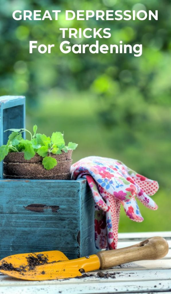 You can take these simple Great Depression Tricks for Gardening to help provide your family with quality food on a budget. #greatdepression #gardening #tricksforgardening #greatdepressiontricks #frugalnavywife | Gardening | Gardening Tricks | Great Depression Tricks | Gardening Tips