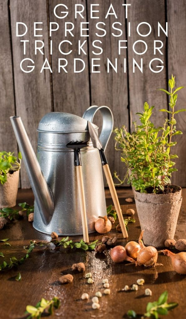 You can take these simple Great Depression Tricks for Gardeningto help provide your family with quality food on a budget. #greatdepression #gardening #tricksforgardening #greatdepressiontricks #frugalnavywife | Gardening | Gardening Tricks | Great Depression Tricks | Gardening Tips