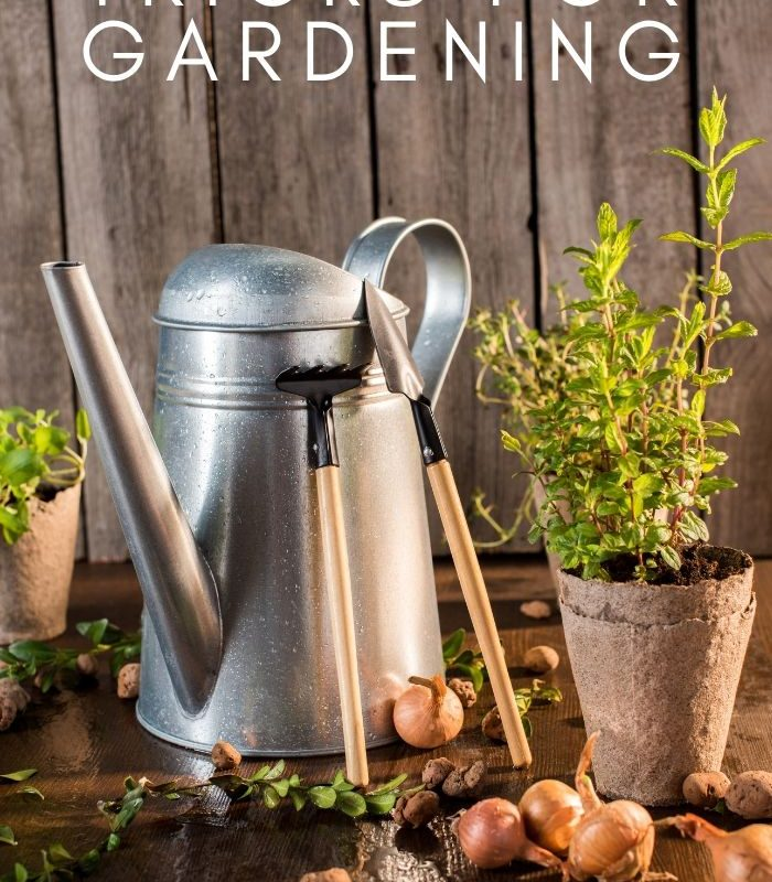 Great Depression Tricks for Gardening