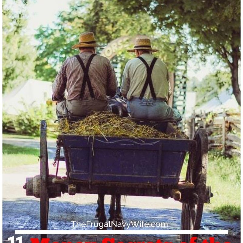 11 Money Secrets of the Amish – Things They Make Instead of Buy