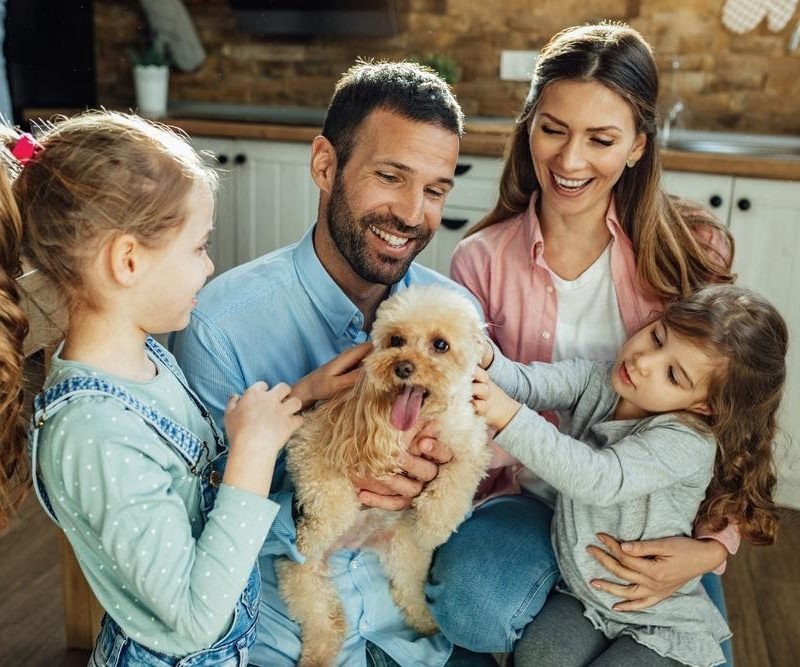 4 Tips for Taking Care of Your First Family Pet